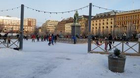 Parco del pattino a Stoccolma Fotografia Stock Libera da Diritti