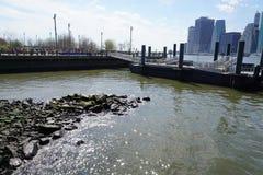 Parco 11 del ponte di Brooklyn Fotografia Stock Libera da Diritti