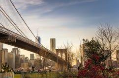 Parco del ponte di Brooklyn al tramonto Fotografia Stock