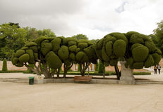 Parco del Retiro (Madrid) Fotografia de Stock Royalty Free