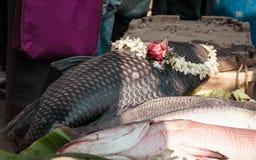 Parco dell'alimento di Nalban, Calcutta 10 gennaio 2019 - un pesce decorato con i fiori al festival del pesce del Bengala è organ fotografia stock libera da diritti