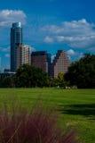 Parco dell'erba verde di Austin Fotografie Stock Libere da Diritti