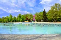 Parco della città alla molla Fotografia Stock Libera da Diritti