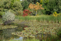 Parco della città a Boise, Idaho Immagini Stock Libere da Diritti
