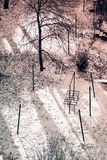 Parco della città con gli alberi Fotografie Stock Libere da Diritti