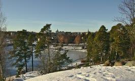 Parco della città con lo stagno congelato immagine stock