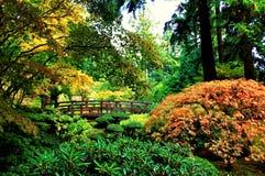 Parco della città di autunno con i colori vibranti fotografia stock libera da diritti