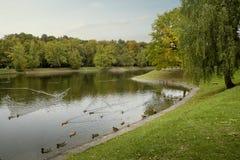 Parco della città di autunno - VDNKH Mosca Fotografie Stock Libere da Diritti