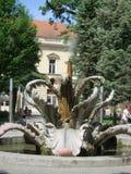 Parco della città e fontana del fiore della pietra, Sremska Mitrovica, Serbia Immagini Stock