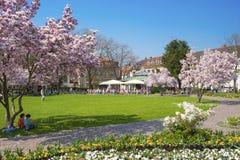 Parco della città in Ettlingen Immagine Stock