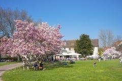 Parco della città in Ettlingen Immagini Stock