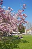 Parco della città in Ettlingen Fotografie Stock Libere da Diritti