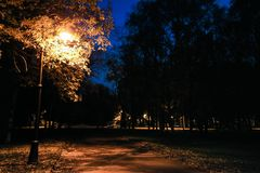Parco della città a penombra con le iluminazioni pubbliche, la via, il vicolo e gli alberi all'autunno Immagini Stock