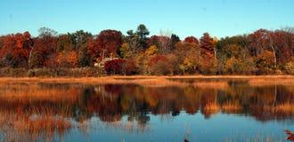 Parco della contea della prerogativa di Welwyn Una riserva naturale bella in Glen Cove Long Island New Youk immagine stock