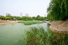 Parco della montagna di Zhengzhou Zijing Immagini Stock