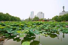 Parco della montagna di Zhengzhou Zijing Immagini Stock Libere da Diritti