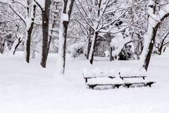 Parco della neve immagini stock