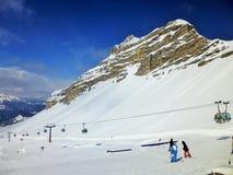 Parco della neve di ursus a Grostè Immagine Stock