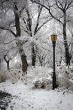 Parco della riva del fiume, NYC fotografia stock libera da diritti
