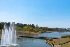 Parco della spiaggia di Hitachi nella prefettura di Ibaraki del Giappone immagini stock