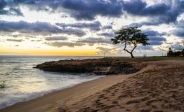 Parco della spiaggia di Kalanianaole, Hawai Fotografie Stock Libere da Diritti