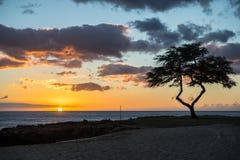 Parco della spiaggia di Kalanianaole, Hawai Fotografia Stock Libera da Diritti