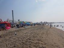 Parco della spiaggia di Santa Cruz Fotografie Stock Libere da Diritti