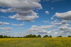 Parco della valle di Sanwell Fotografia Stock Libera da Diritti