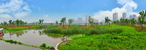 Parco della zona umida Immagini Stock