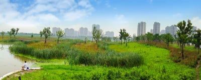 Parco della zona umida Immagini Stock Libere da Diritti