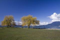 Parco delle banche spagnole, Vancouver della spiaggia Fotografia Stock