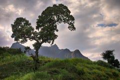 Parco delle montagne di Simien Immagini Stock