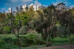 Parco di acclimatazione di Sao Paulo a settembre immagini stock libere da diritti