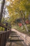 Parco di Angeles del sorso di Nanchino Fotografia Stock Libera da Diritti