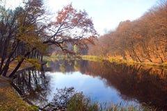 Parco di autunno Fotografie Stock