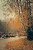 Parco di autunno con il ponte Immagini Stock
