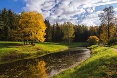 Parco di autunno con lo stagno Fotografia Stock