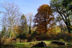 Parco di autunno e ponte di pietra fotografia stock libera da diritti