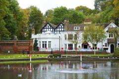 Parco di autunno in Surrey, Regno Unito Immagini Stock Libere da Diritti