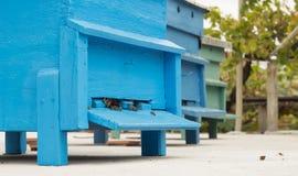 Parco di cattivo Corridoio Fotografie Stock