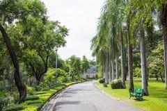 Parco di Chatuchak a Bangkok Tailandia Fotografia Stock Libera da Diritti