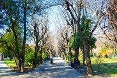 Parco di Cishmigiu Fotografie Stock