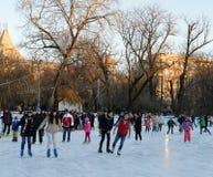 Parco di Cismigiu di pattinaggio su ghiaccio, Bucarest, Romania Immagine Stock Libera da Diritti