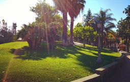 Parco di Comunal Immagini Stock Libere da Diritti