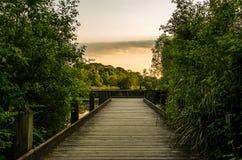 Parco di Etherow Fotografia Stock