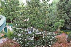 Parco di europa in Germania, bella vista immagine stock