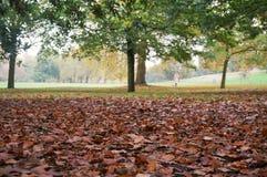 Parco di Greenwich in autunno Immagini Stock Libere da Diritti