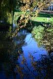 Parco di Holywells, Regno Unito, colori delle foglie di autunno Fotografie Stock