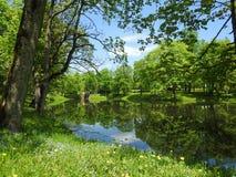 Parco di immersione, Lituania Fotografie Stock Libere da Diritti