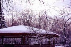 Parco di inverno con un padiglione Fotografia Stock